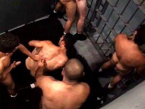 Sexo Na Prisão. Sexo Na Prisão Porn