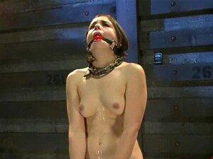 TATUAGEM 16759-thetraingofo Xvideos Porn