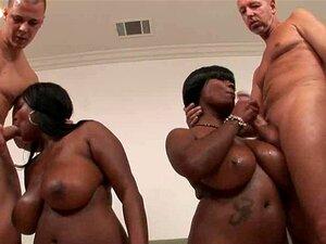 Dois Babes Preto Com Peitos Enormes Fazendo Boquete Porn
